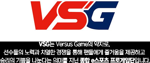 VSG는 Versus Game의 약자로, 선수들의 노력과 치열한 경쟁을 통해 팬들에게 즐거움을 제공하고 승리의 기쁨을 나눈다는 의미를 지닌 종합 e스포츠 프로게임단입니다.